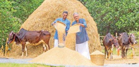 14 ஏக்கர் நெல் சாகுபடி... ஆண்டுக்கு 6,60,000 ரூபாய் லாபம்!