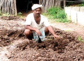இடுபொருள்: சுபாஷ் பாலேக்கரின் இயற்கை இடுபொருள் தயாரிப்பு முறைகள்!