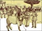 கதைகளின் கதை: குழூஉக்குறி - சு.வெங்கடேசன்